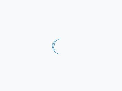 Dhit.pl magnesy