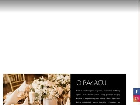 Palacradziwillow.pl na wesele