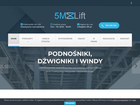 5m-lift.pl podnośnik towarowy Warszawa