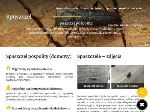 Spuszczel.info zdjęcia