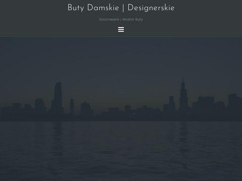 Wero-trans.pl busy Polska-Holandia