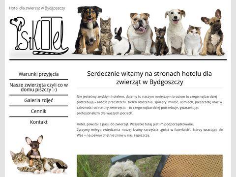 Psikotel.bydgoszcz.pl hotel dla królików