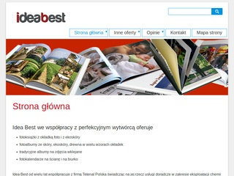 Ideabest.pl reklama w internecie