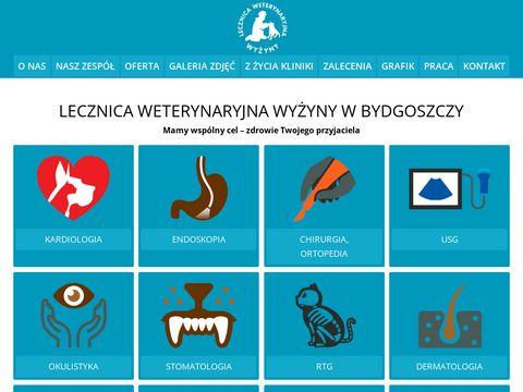 Lecznicawyzyny.pl rzetelny weterynarz Bydgoszcz