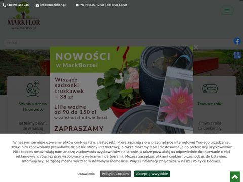 Markflor.pl pielęgnacja ogrodów