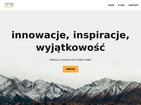 AMS Concert - agencja eventowa