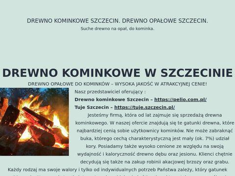 Dokominka.eu drewno kominkowe