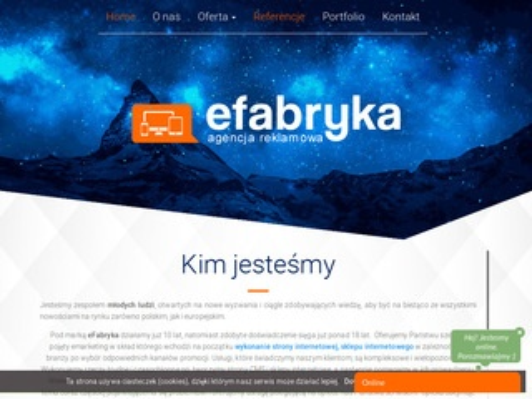 Efabryka.net strony internetowe