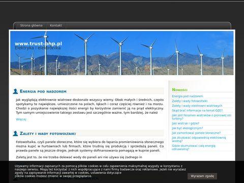 Trust buty ochronne Toruń