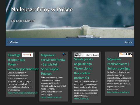 Pgi.com.pl