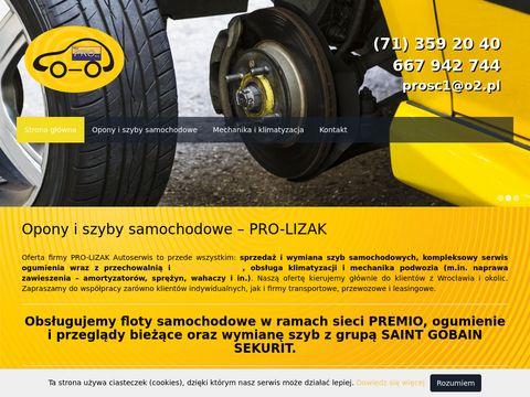 Pro-Lizak autoszyby Wrocław