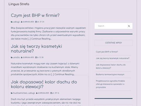 Linguastrefa.pl angielski lekcje indywidualne Katowice